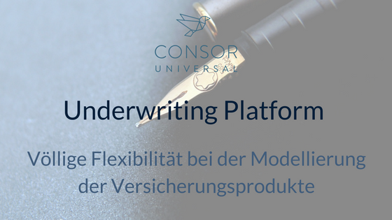 Underwriting Platform